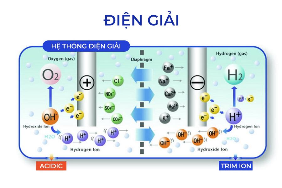 Cung cấp nước điện giải cho cơ thể